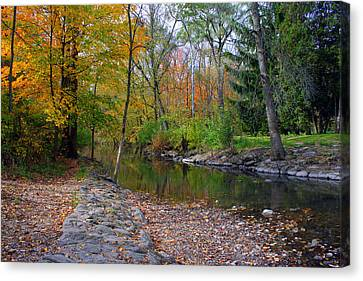 Autumn's Splendor Canvas Print by Kay Novy
