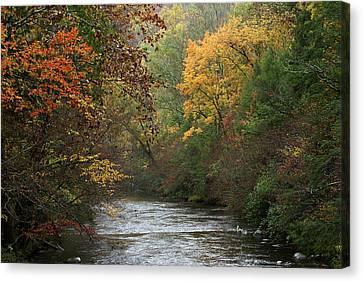 Autumn's Splendor Canvas Print by TnBackroadsPhotos