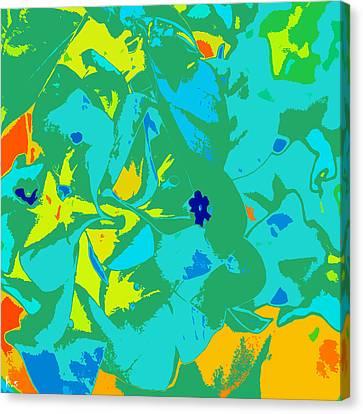 Avi Canvas Print by Keren Shiker