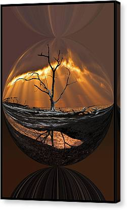 Awakening Canvas Print by Debra and Dave Vanderlaan