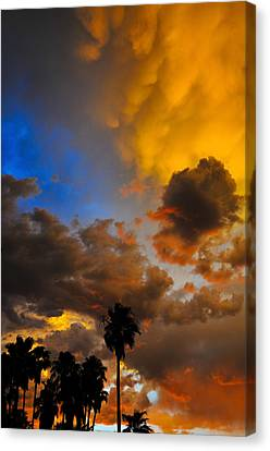 Aware Canvas Print by Skip Hunt