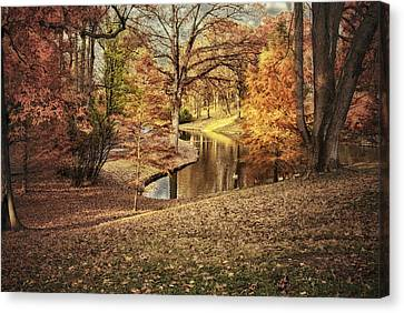 Canvas Print featuring the photograph Awesome Autumn by Mary Timman
