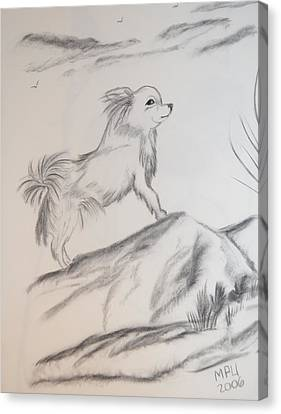 Canvas Print featuring the drawing Aye Chihuahua by Maria Urso