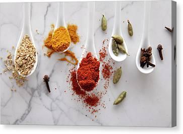 Ayurvedic Warming Spices Canvas Print by Shana Novak