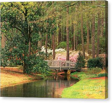 Azaleas And Footbridge Canvas Print by Michael Hubrich and Photo Researchers