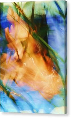 Azul 8 07 Canvas Print by Bradley