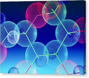 B-chain Of Insulin Molecule Canvas Print