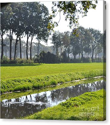 Canvas Print featuring the photograph Baarschot Picture by Nop Briex
