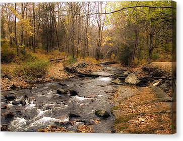Babbling Brook In Autumn Canvas Print