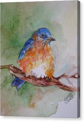 Canvas Print featuring the painting Baby Blue Bird by Gloria Turner
