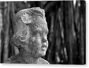Baby Face Canvas Print by David Lee Thompson