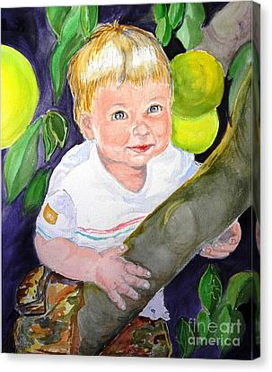 Baby In The Tree Canvas Print by Susan  Clark
