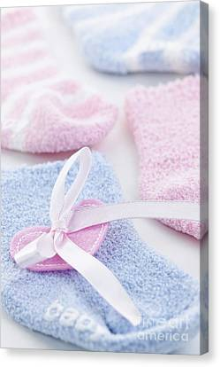 Baby Socks  Canvas Print by Elena Elisseeva
