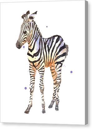 Baby Zebra Nursery Animal Art Canvas Print