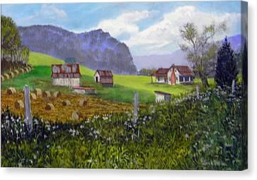 Back Roads Beauty  Sold Canvas Print
