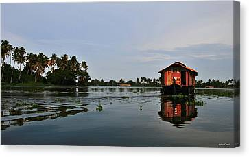 Back Waters Canvas Print