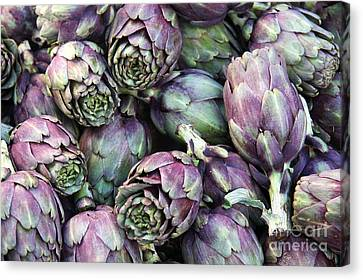 Background Of Artichokes Canvas Print by Jane Rix