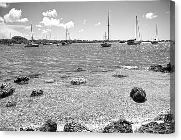Background Sailboats Canvas Print by Betsy Knapp