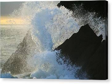 Backlit Wave 2 Canvas Print