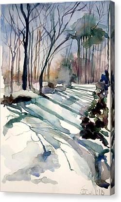Backyard Snow Canvas Print by Judith Scull