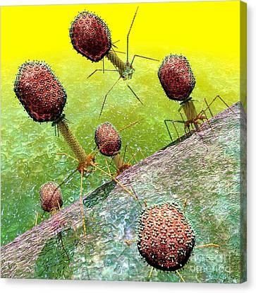 Bacteriophage T4 Virus Group 2 Canvas Print by Russell Kightley