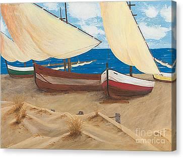 Baja Beach Dunes Canvas Print
