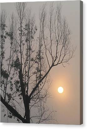 Canvas Print featuring the photograph Balance by Lyn Calahorrano