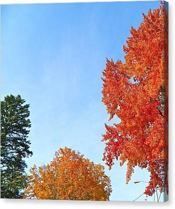 Balance Of Beauty Canvas Print by Randy Rosenberger