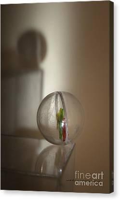 Balance Canvas Print by Vicki Ferrari Photography
