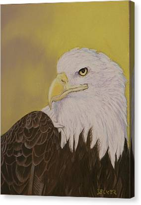 Canvas Print featuring the drawing Bald Eagle by Robert Decker