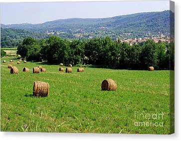 Bales Of Hay Canvas Print by Andrea Simon