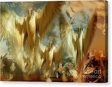 Canvas Print featuring the photograph Balet by Danica Radman