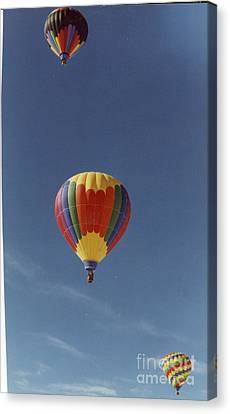 Balloons Trio Canvas Print by Stacey Grant