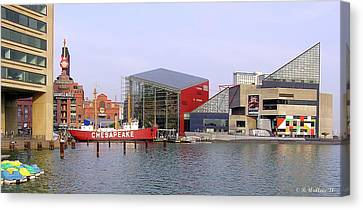 Baltimore Inner Harbor Canvas Print by Brian Wallace