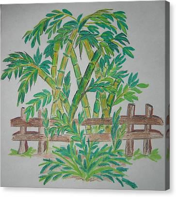 Bamboo Fence Canvas Print - Bamboo by Deepa Padmanabhan