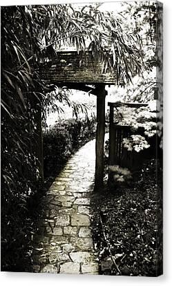 Bamboo Garden - 1 Canvas Print by Alan Hausenflock
