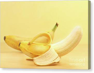 Bananas Canvas Print by Sandra Cunningham