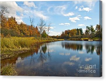 Bar Harbor Maine Fall Canvas Print