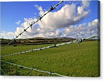 Barbed Wire Cloud Canvas Print by Lee Rees
