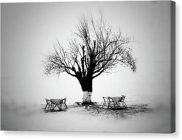 Bare Tree Canvas Print by YongJun Qin
