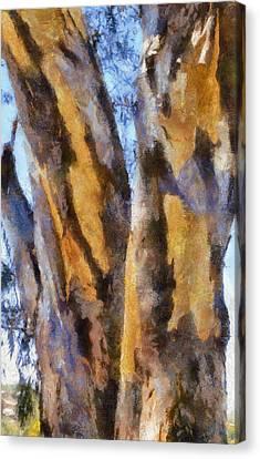Canvas Print featuring the digital art Bark by Roberto Gagliardi