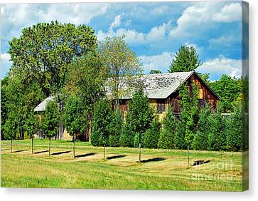 Barn And Trees Canvas Print