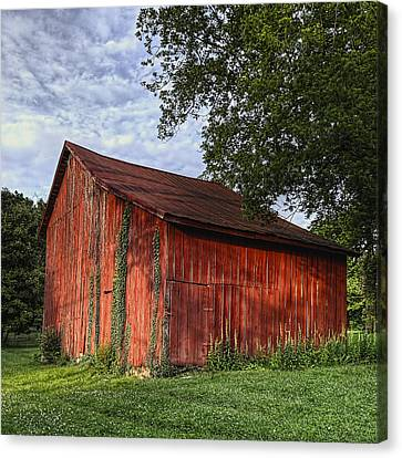 Barn At Avenel Plantation - Bedford Va Canvas Print by Steve Hurt