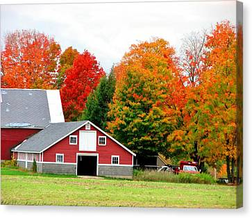 Barn Red Canvas Print