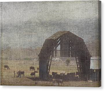 Barn Remnants Canvas Print by Cindy Wright