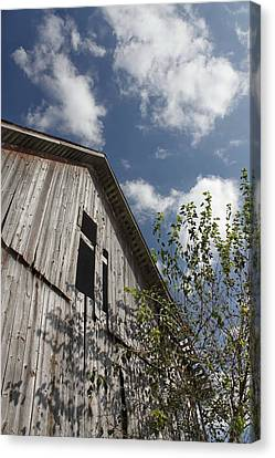 Barn To Be Wild Canvas Print