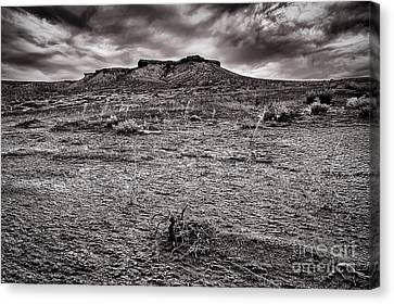 Baron Land And Gloomy Sky Canvas Print by Darcy Michaelchuk