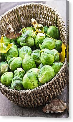 Basket Of Brussels Sprouts Canvas Print by Elena Elisseeva