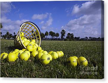 Basket Of Golf Balls Canvas Print by Skip Nall