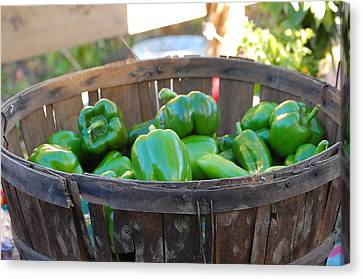 Canvas Print featuring the photograph Basket Of Green Peppers by Mary McAvoy